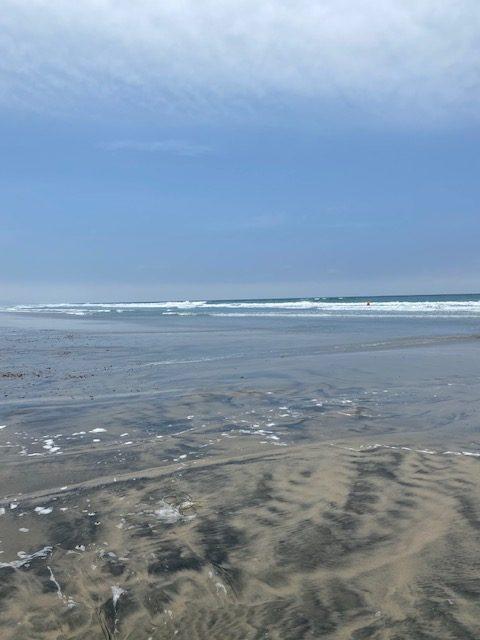 Moonlight Beach Shore